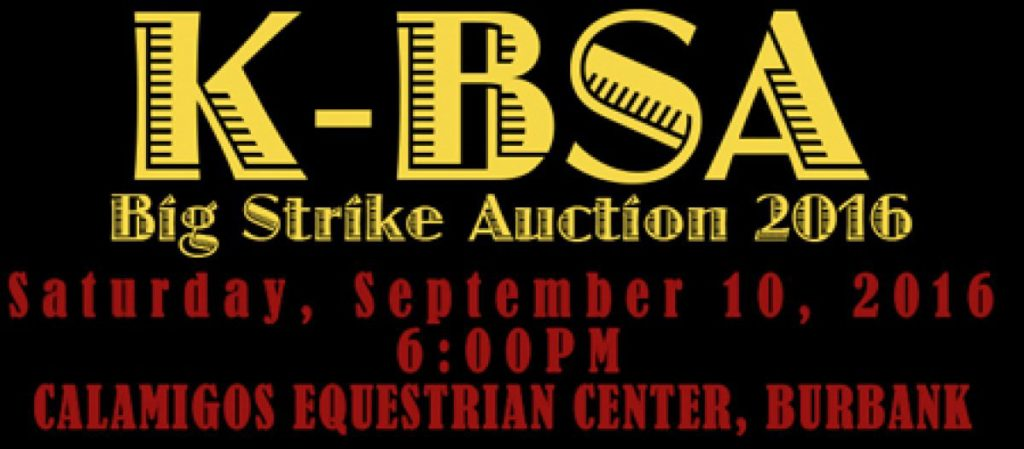 Big Strike Auction Banner
